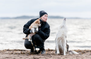 Hundtränare i Stockholm